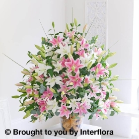 Fabulous 50 Pink & White Lily Arrangement