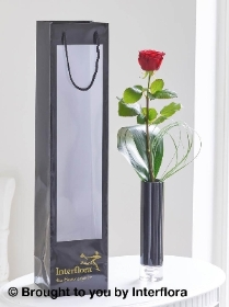 Single Red Rose Vase with 125g Maison Fougere Chocolates
